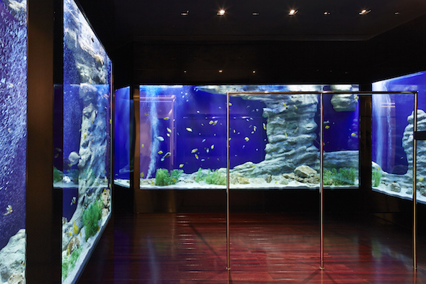 Givenchy Aquarium web